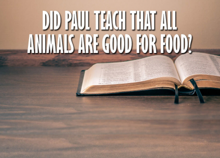 TW Answers: Did Paul Teach That All Animals Are Meant to be Eaten?