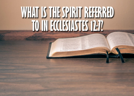 TW Answers: What is the Spirit Referred to in Ecclesiastes 12:7?