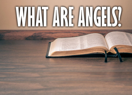 TW Answers: What Are Angels?